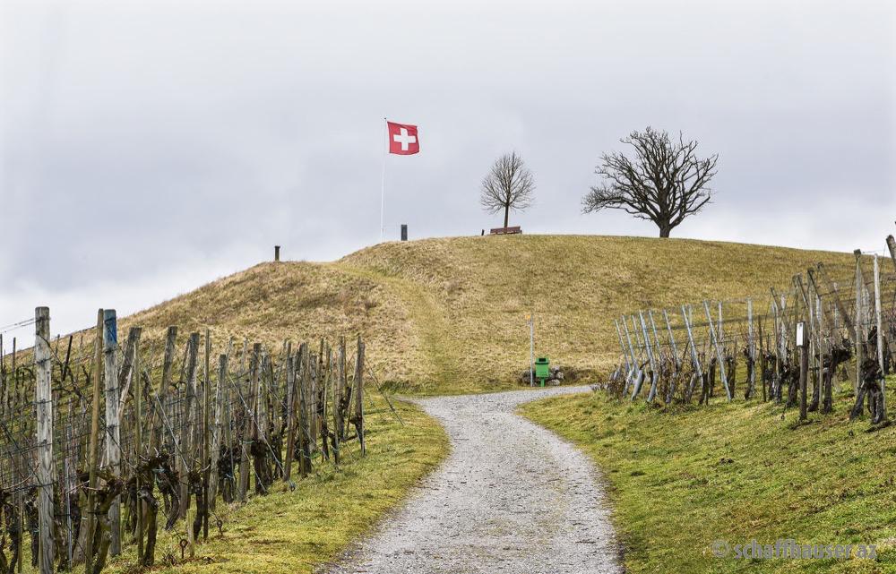 Triste Angelegenheit: Der «Buck» oberhalb Dörflingens.