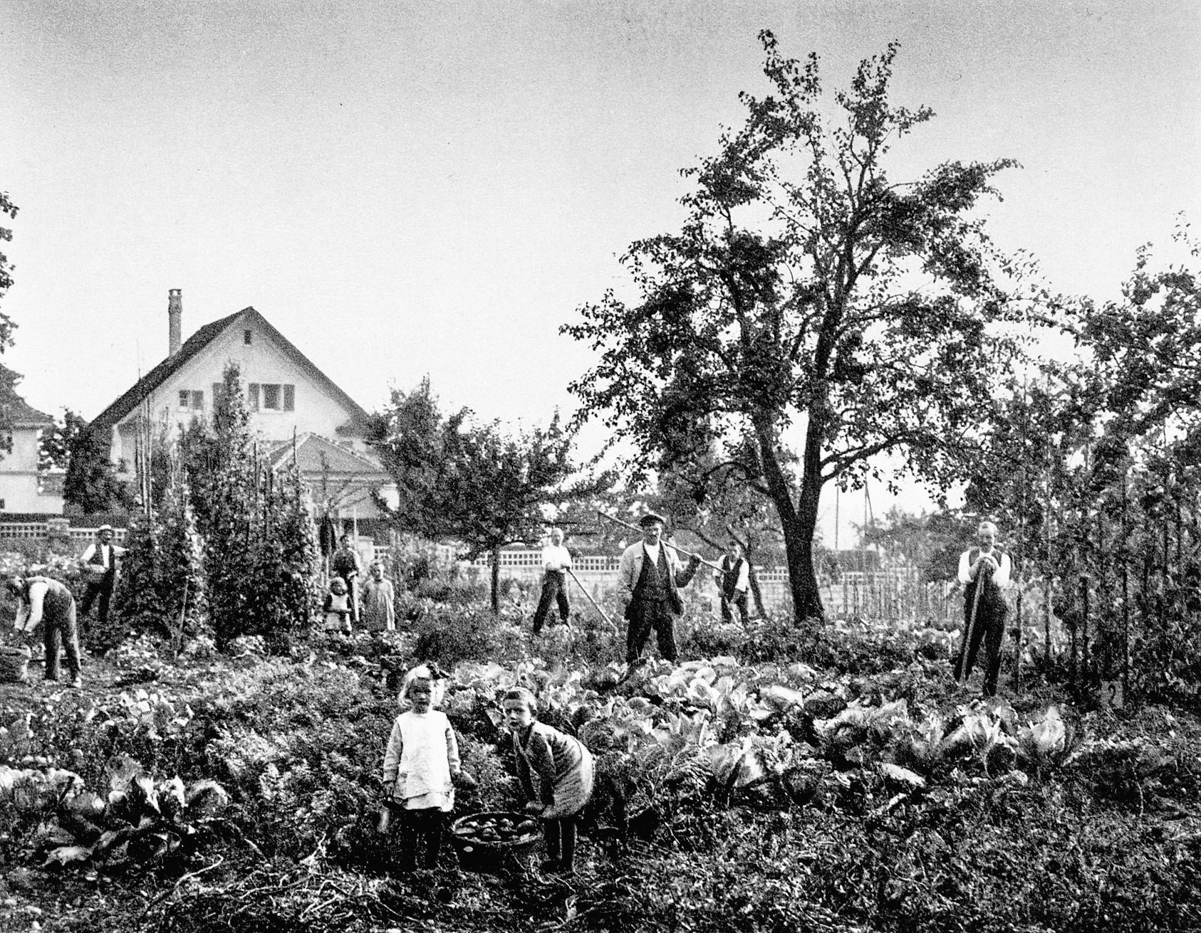 Pantlibewohnerinnen und -bewohner in ihren Gärten, 1926. Foto: 30 Jahre Aktiengesellschaft, 1926 / Stadtarchiv